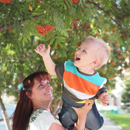 cute happy little boy lifting by his mother picking ashberry Stock Photo
