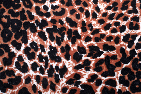 leopard ornament decor background closeup Stock Photo