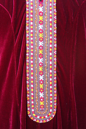 beautiful ornament embroidered color dress