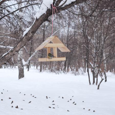 winter bird feeder in a park 版權商用圖片