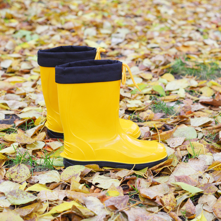 bright yellow rubber boots on the autumn leaves background