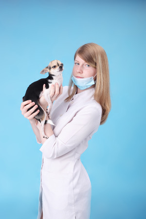 pretty young veterinarian with the little dog