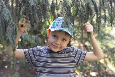 cute little boy walking in a coniferous park