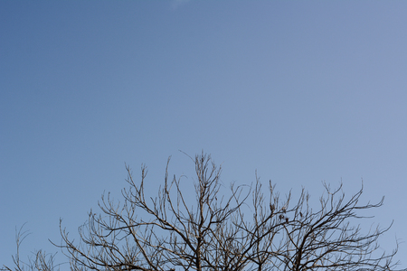 vdo: blue sky,background vdo and multimedia, Stock Photo