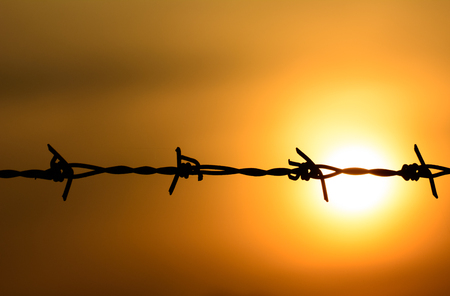barbed wire fence: Macro silhouette of Barbed wire on sunset background