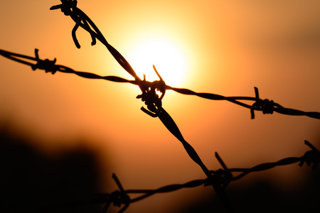 prison yard: Macro silhouette of Barbed wire on sunset background