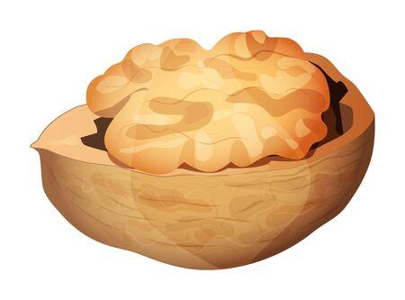 Cute cartoon walnut isolated on a white background. Vector illustration. Ilustração