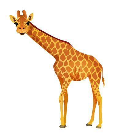 Cartoon giraffe isolated on a white background. Vector illustration. Illustration