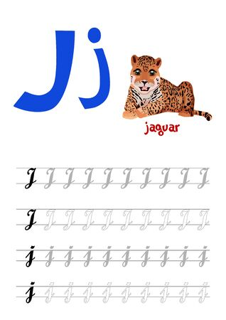 Design page layout of the English alphabet to teach writing upper and lower case letter J with funny cartoon Jaguar. Flat style. Vector illustration
