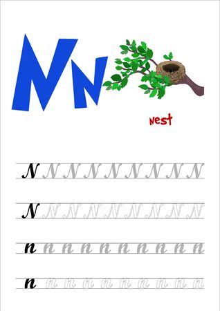Design page layout of the English alphabet to teach writing upper and lower case letter N with funny cartoon Nest. Flat style. Vector illustration