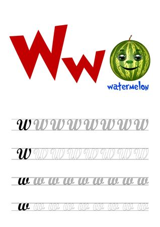 Design page layout of the English alphabet to teach writing upper and lower case letter W with funny cartoon watermelon. Flat style. Vector illustration