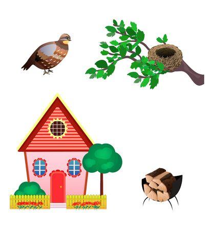 Set Icons Of Quail, Nest, House, Wood Isolated On White Background. Flat style. Vector illustration Stock Illustratie