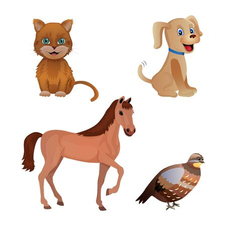 Set of different animal isolated on the white background. Cat, dog, horse, quail. Flat style. Vector illustration Ilustrace