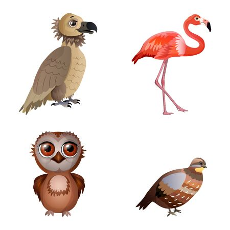 Set of different birds isolated on the white background. Vulture, flamingo, owl, quail. Flat style. Vector illustration.