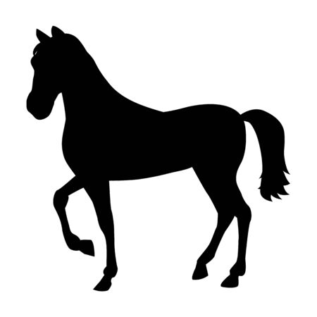 Black Silhouette Of Horse Isolated on the White Background. Web Template Design. Flat Style. Vector Illustration Illustration