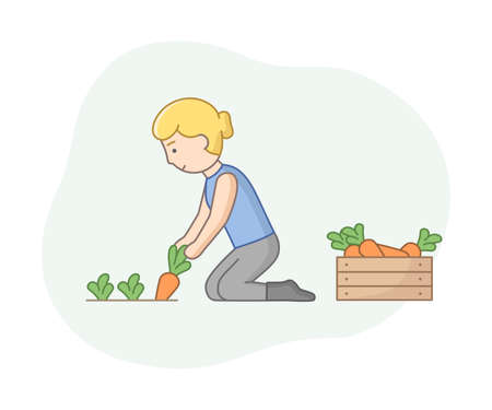 Linear Cartoon Farmer Gathering Ripe Carrot From Ground And Putting It In Wooden Box. Female Character With Outline And Summer Vegetable Harvest. Vector Composition Of Seasonal Harvesting Concept 向量圖像