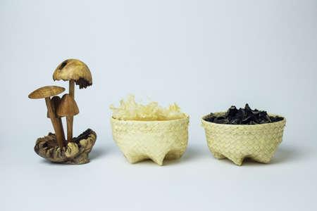Fungus in baskets beside mushroom decoration