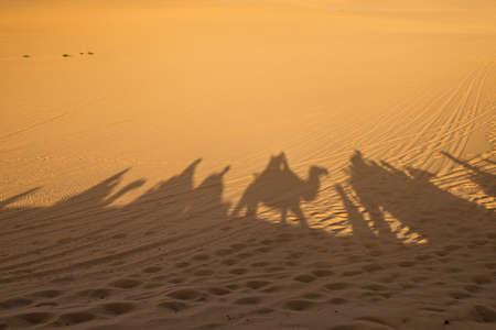 Shadow of camel caravan in the desert