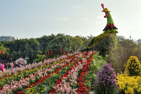 The rooster made of colorful fresh flowers, the Chinese New Year decoration in the city park. 스톡 콘텐츠