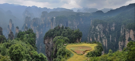 The small paddy fields at Zhangjiajie, in Hunan Province in China.