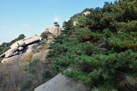Mount Jiuhua, Nine Glorious Mountains, is one of the four sacred mountains of Chinese Buddhism located in Qingyang County in Anhui Province in China. Stock Photo