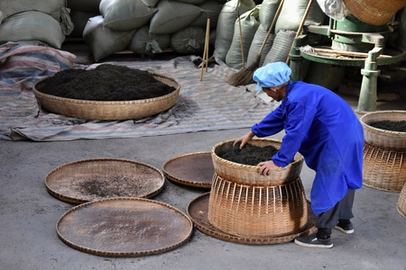 ANHUI PROVINCE, CHINA - CIRCA OCTOBER 2017: A man working inside a tea factory with the big wicker baskets, where the famous black tea Liu An drying.