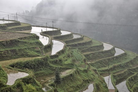 The terraced rice fields on the slope of mountains in Guizhou province in China. Traditional floating rice system use at cascades paddies.