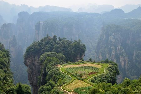 The small paddy fields inside the mountain, Zhangjiajie, in Hunan province in China. Thousand and thousand rock soar to skyward. Banco de Imagens