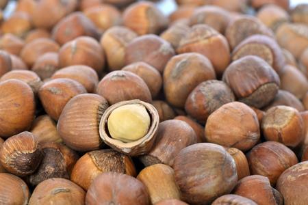 corylus: hazelnut Stock Photo