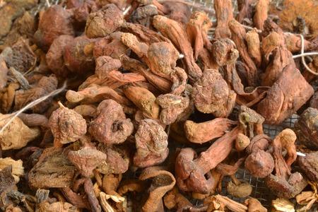 dried vegetables: hongos secos