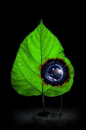 葉っぱのブラックホール 写真素材