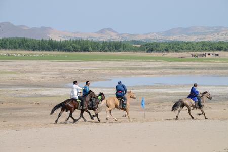 mongolia horse: Inner Mongolia horse Editorial