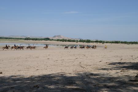 mongolia horse: Herdsmen in Inner Mongolia horse racing