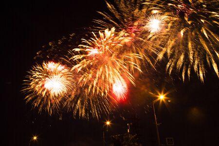 bright multi-colored festive fireworks in the night sky