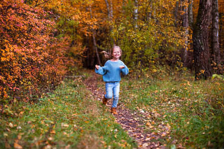 little girl walking in autumn forest in blu clothes Foto de archivo
