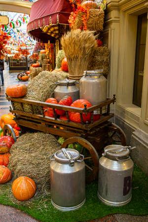 pumpkins as a decor for a photo