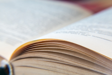 Open old book. Yellowed pages. Paper texture. Macro.