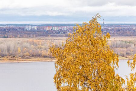 Autumn river landscape. The city of Bor is on the horizon. Yellow birch in the foreground. The city of Nizhny Novgorod, the Volga river, Russia. Stok Fotoğraf