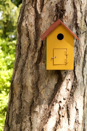 centennial: wooden bird house on a centennial pine trunk Stock Photo