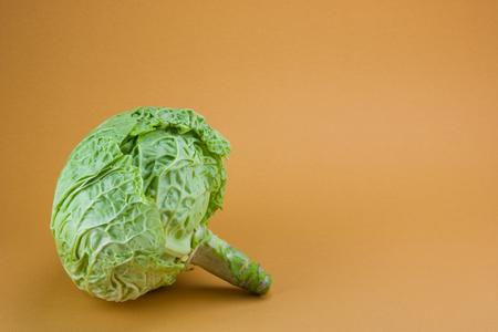 fresh cabbage with stem just picked from the garden on mustard background Stock Photo