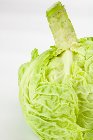 details of  green cabbage with stem on white background Stock Photo