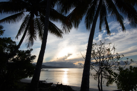 exotic sunrise by the sea through the palms, gam island