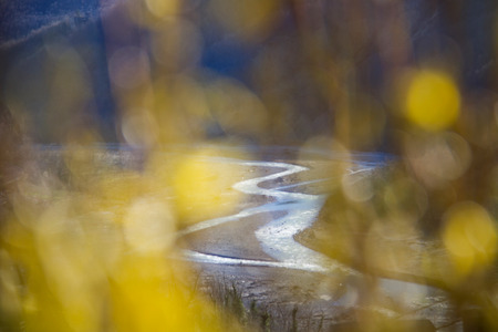 the loops of river in iotalian valley view through yellow flowers defocused