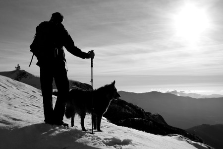 silhouettes of hiker and dog arriving on the top of the mountain, black and white Stock Photo