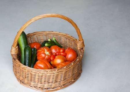 natural tomatoes and zucchini in a basket directly from vegetable garden