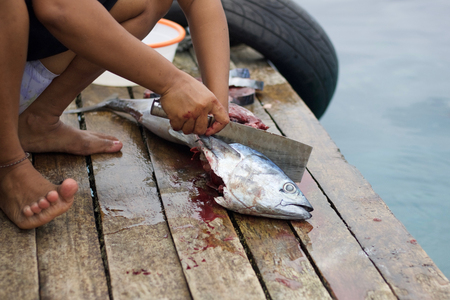 woman hands cutting a tuna head on a wooden pier to prepare lunch in west papua