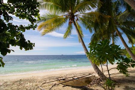 exotic landscape of a wild beach in raja ampat archipelago, west papua