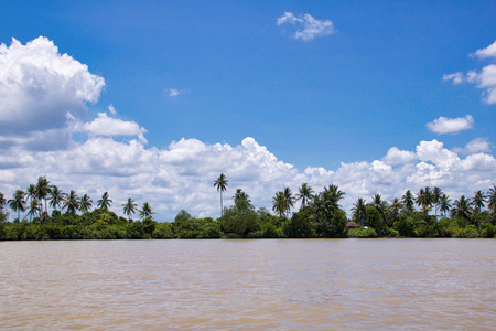 scenic view of tropical  big river in kalimantan, indonesian borneo