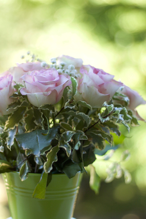 delicate bouquet of pink roses in a green pot, defocused background