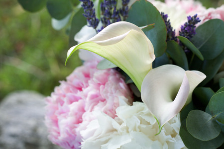 selective focus on a perfect white calla in a spring bouquet Stock Photo